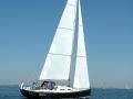 Beluga J39_ (68)
